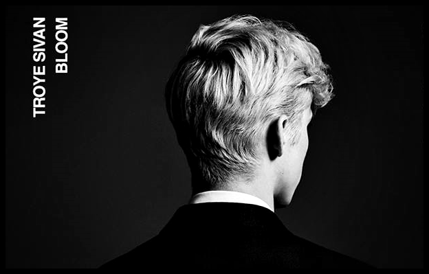 Image result for troye sivan album cover bloom